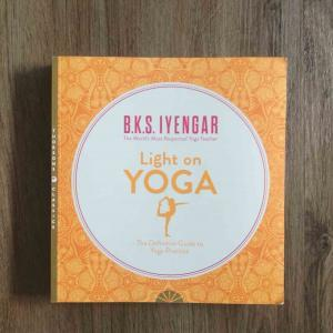 picture of the book Light on yoga